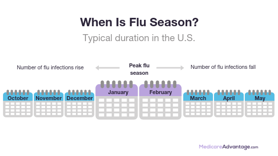When is flu season graphic